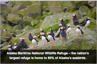 Áreas marinhas protegidas nos USA, imagem de área marinha protegida no Alasca