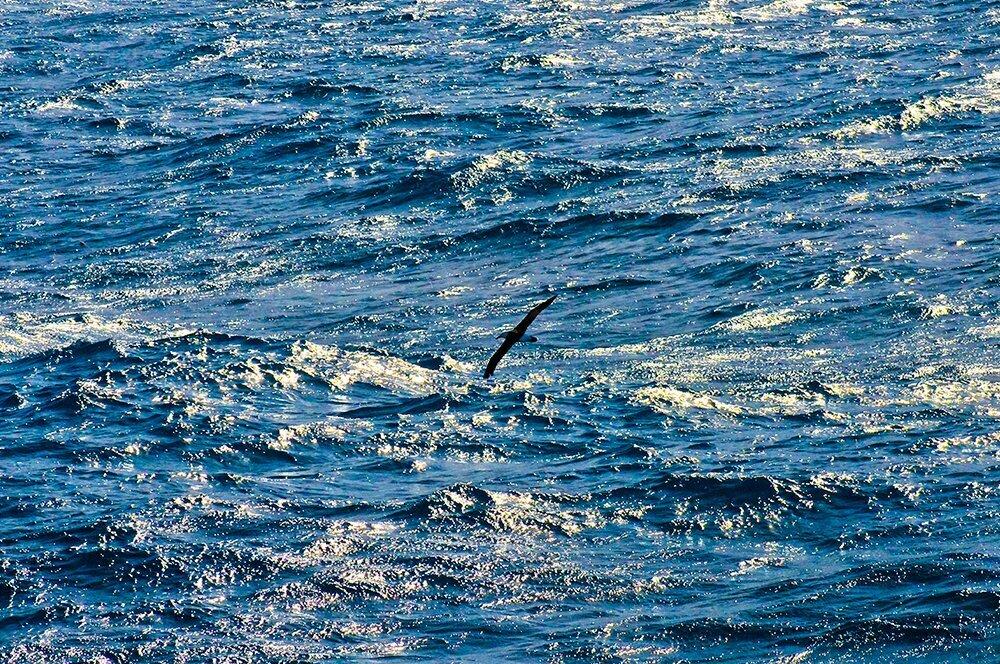 alto mar, imagem do alto mar