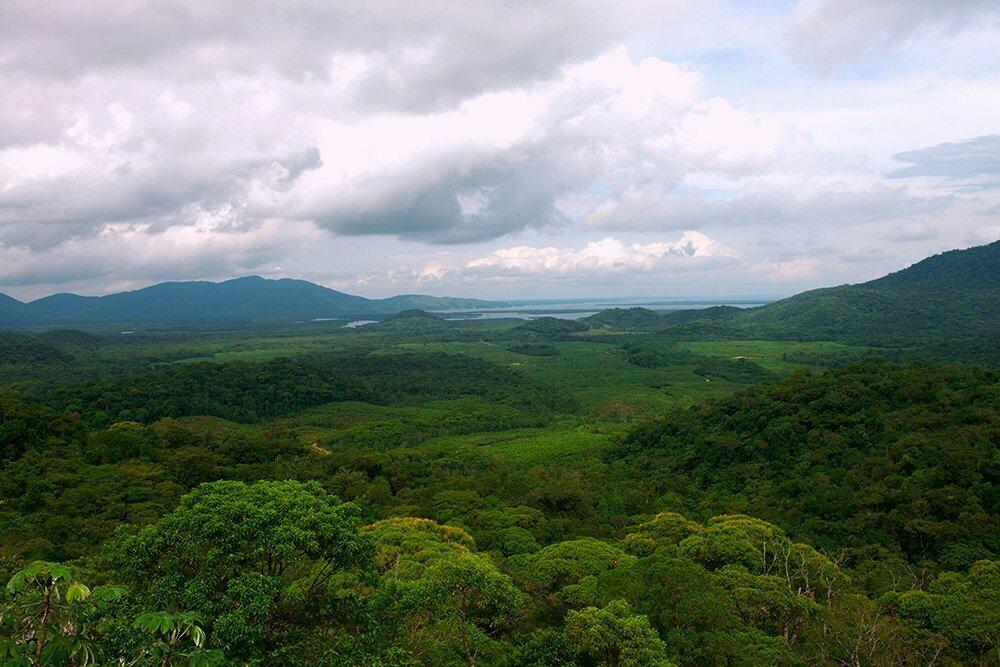 Imagem do Lagamar, planície costeira e morros com mata atlânticaAPA E ESEC de Guaraqueçaba