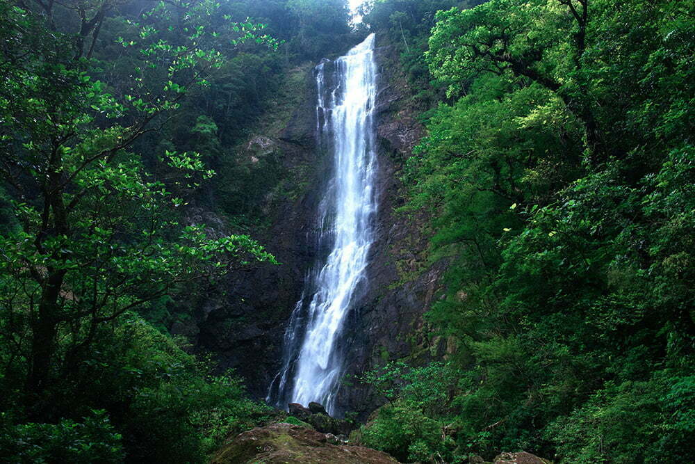 RPPN Salto Morato, Reserva Particular do Patrimônio Natural Salto Morato,imagem da cachoeira Salto Morato, Paraná