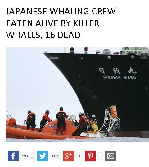 Notícia Falsa: tripulantes de baleeiro japonês são mortos por baleias , imagem de navio baleeiro