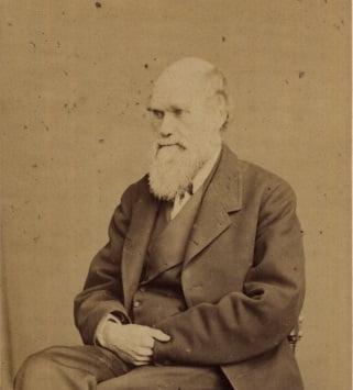 A circunavegação de Darwin, imagem darwin