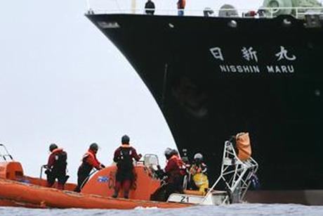 Notícia Falsa: tripulantes de baleeiro japonês são mortos por baleias , imagem tripulação de baleeiro japonês é atacada por baleias