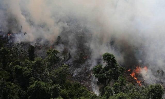 Dilma não criou novas Unidades de Conservação na Amazônia, imagem de queimada