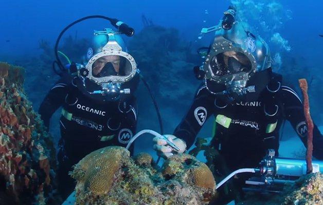imagem aquanautas