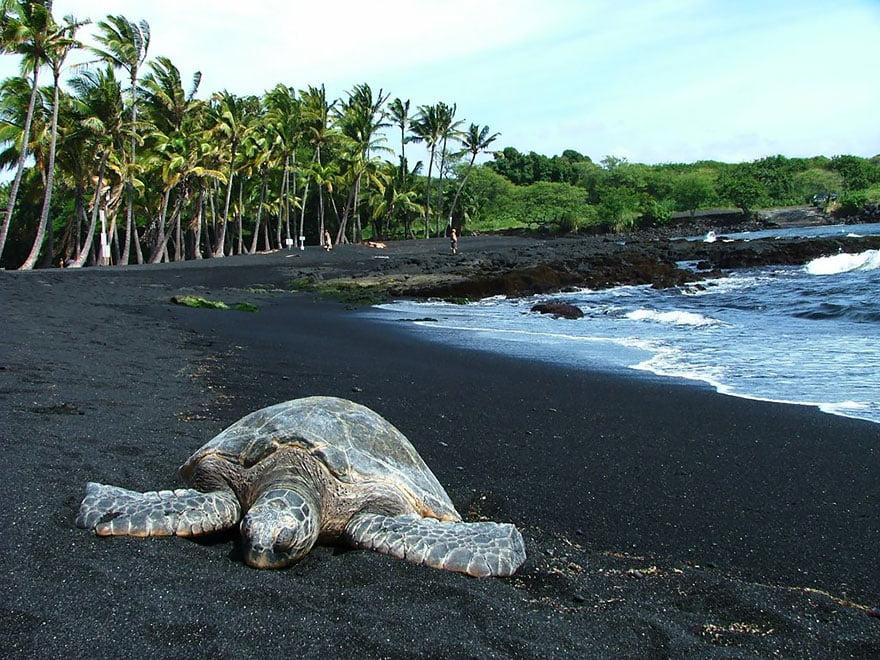 As praias mais diferentes do mundo, imagem de praia no havai preta