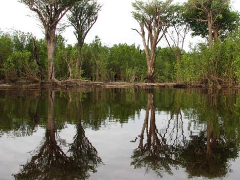 Orçamento de parques e reservas cai para 2015, imagem de área protegida
