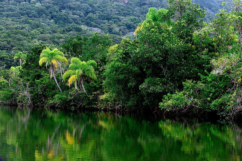 Arie Ilha do Ameixal e Mosaico Juréia- Itatins, imagem do rio-verde, Mosaico Juréia- Itatins.