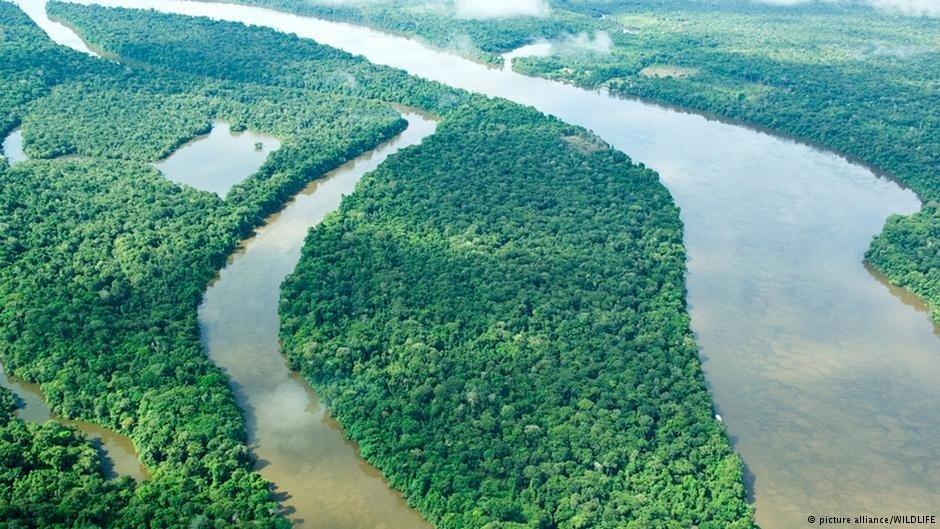 Brasil não ratifica protocolo de biodiversidade, imagem aérea da amônia