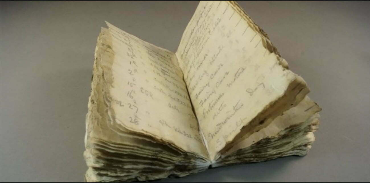 imagem do diário da expedição Terra Nova, de George Levick