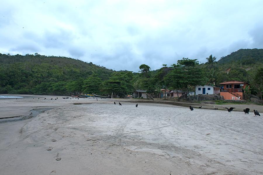 Parques Estaduais Ilhabela e ilha Anchieta, imagem de -praia-castelhanos