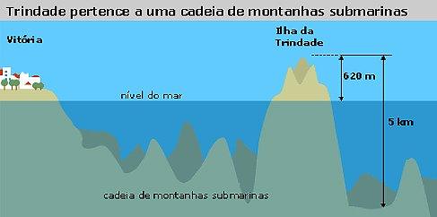 algas calcárias , ilustração dos Recursos marinhos próximo a ilha de trindade