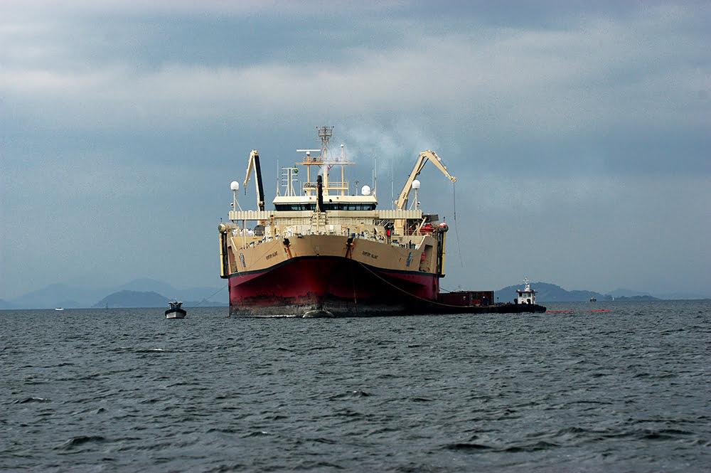 APA Guapimirim / ESEC da Guanabara, imagem de navio-
