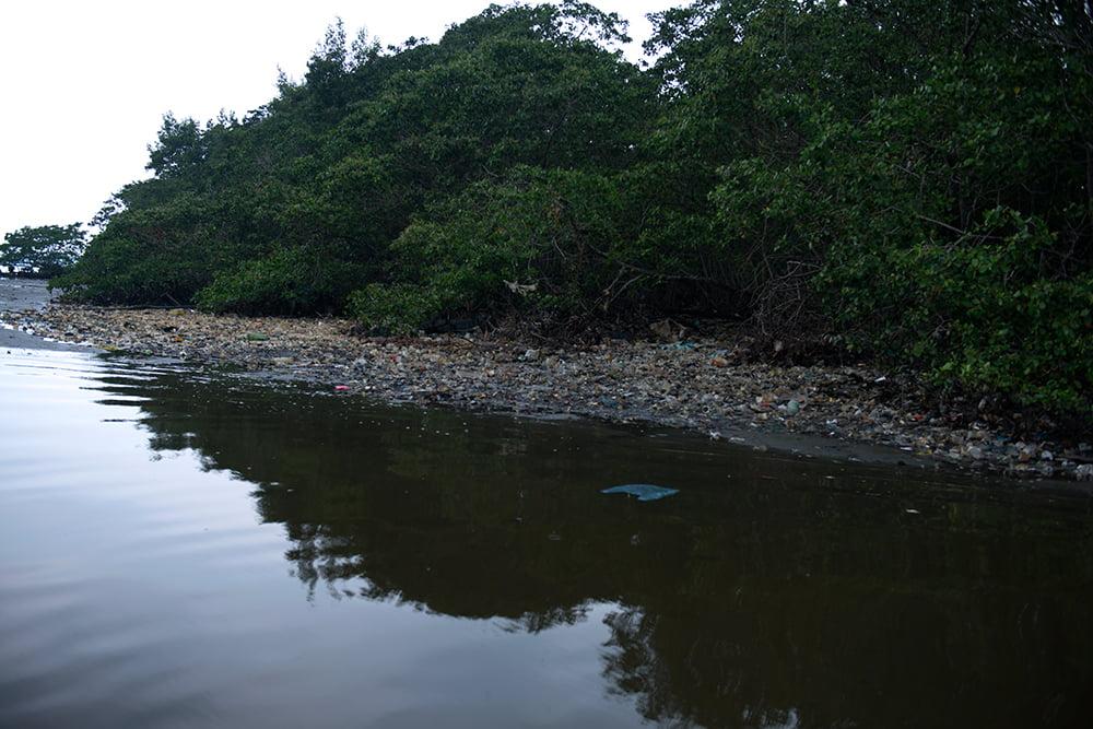 APA Guapimirim / ESEC da Guanabara, imagem do-lixo-no-mangue-da-baia-de-guanabara
