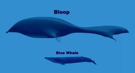 gigante dos mares, imagem de ilustração mostrando baleia