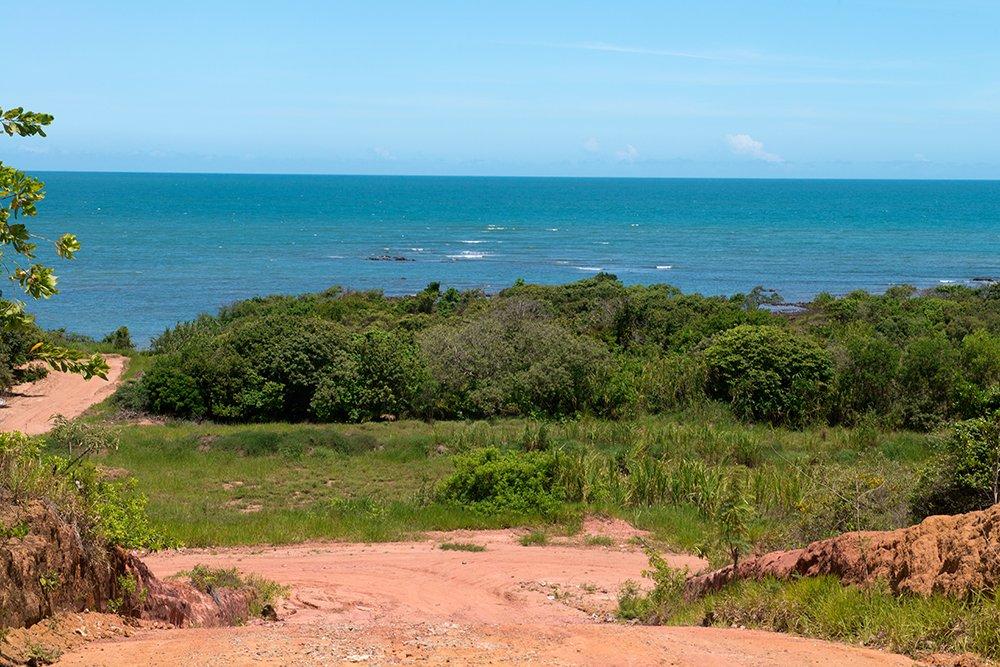 Reserva Biológica dos Comboios e APA Costa das Algas, imagem da-restinga-na APA COSTA DAS ALGAS