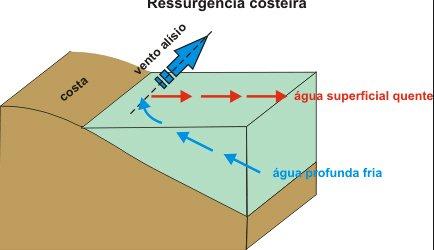 grafico-ressurgência