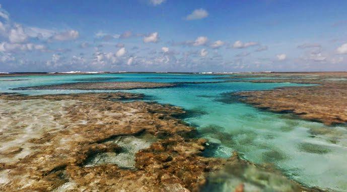 atol das rocas noronha