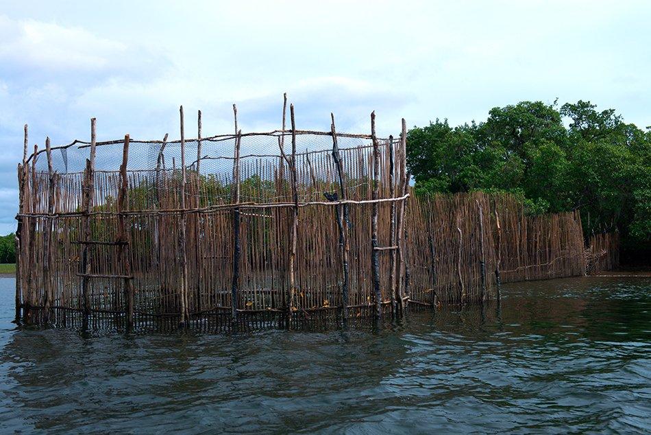 APA Cananéia - Iguape - Peruíbe, imagem de cerco na APA Cananéia - Iguape - Peruíbe