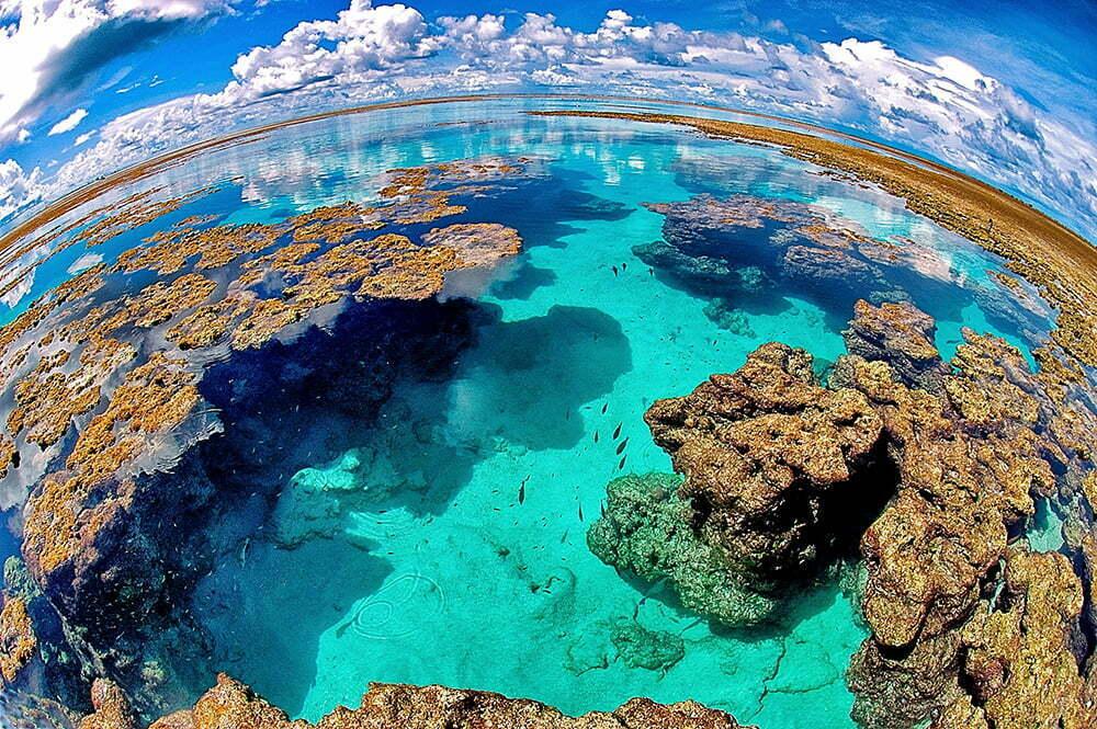 Alonso Irineu Goes,, imagem do atol-das-rocas