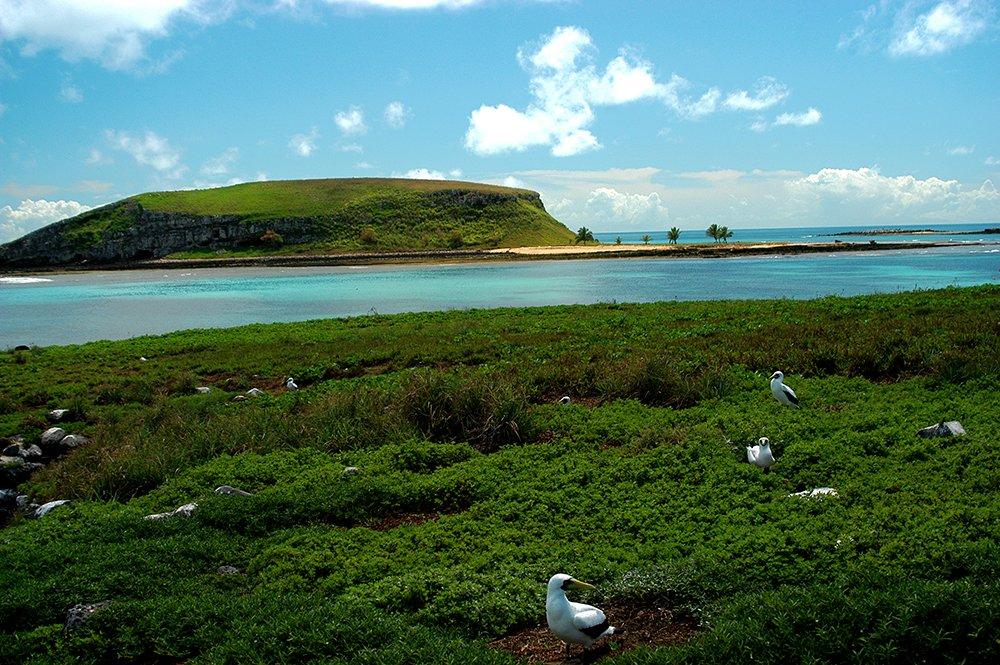 imagem da ilha redonda, arquipélago dos Abrolhos