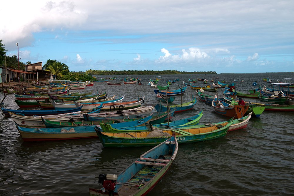 as-canoas-sergipanas-