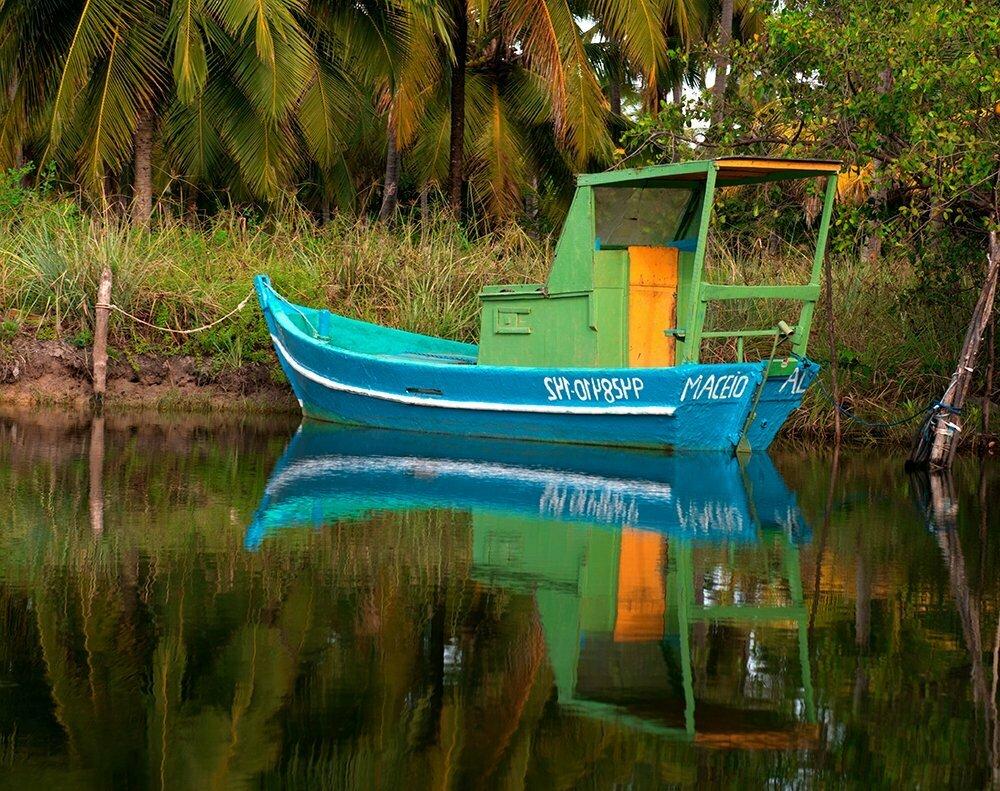 Resex Lagoa do Jequiá, imagem de  barco-azul
