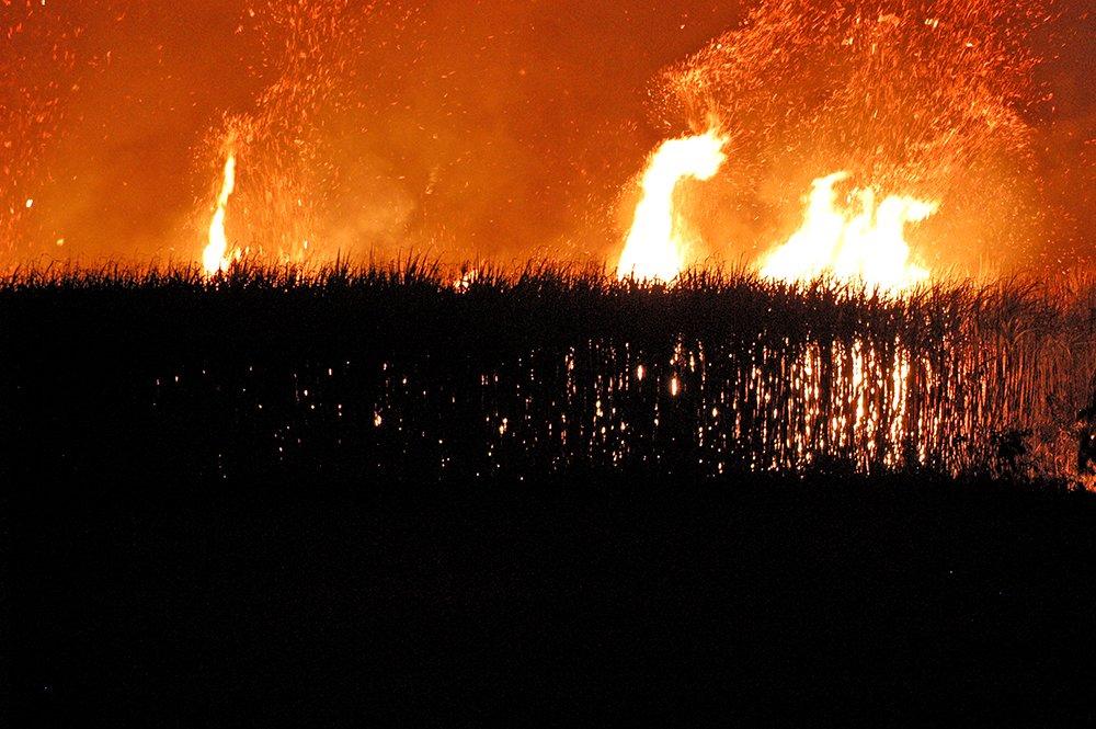resex acaú goiana, imagem de queimada da cana de açúcar