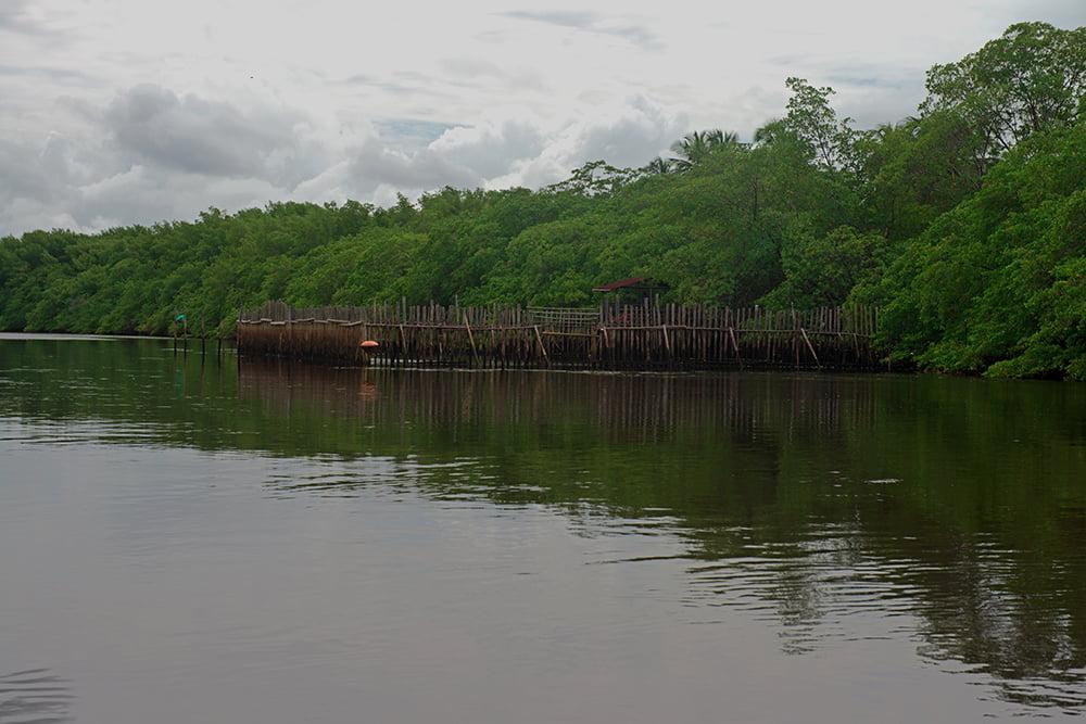 APA Costa dos Corais, imagem do rio Tatuamunha