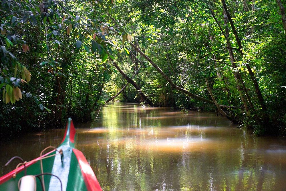 Resex Lagoa do Jequiá, imagem de um-braço-de-rio-