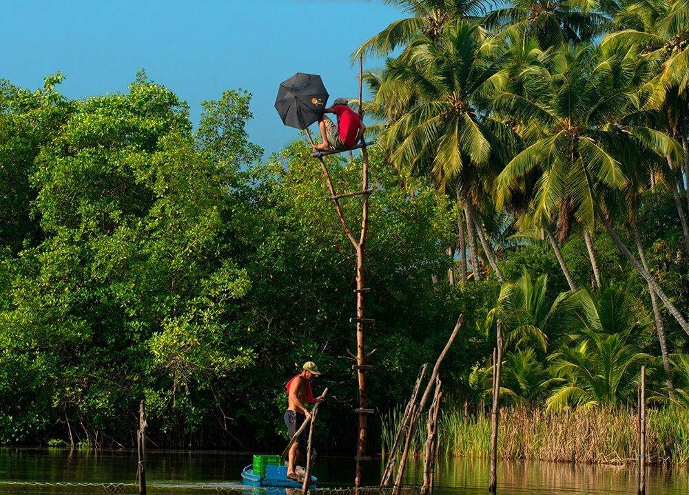Resex Lagoa do Jequiá, imagem de pescador vigiando-o-pescado