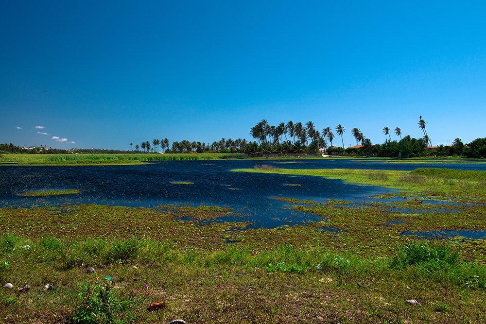 imagem de lagoa