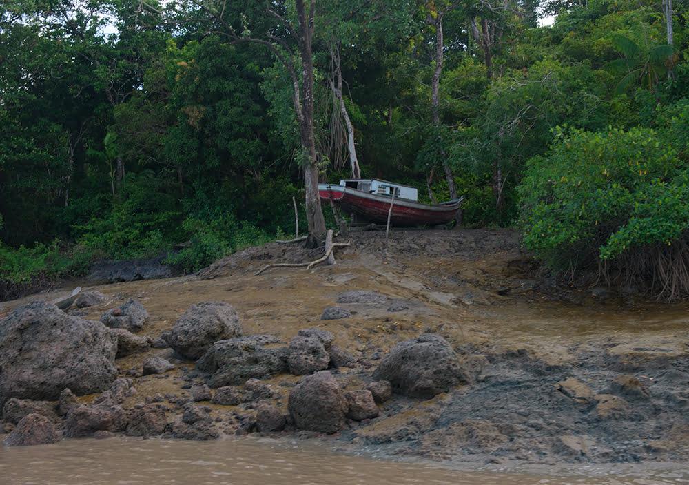 Resex Gurupi- Piriá, imagem da margem do rio gurupi piriá