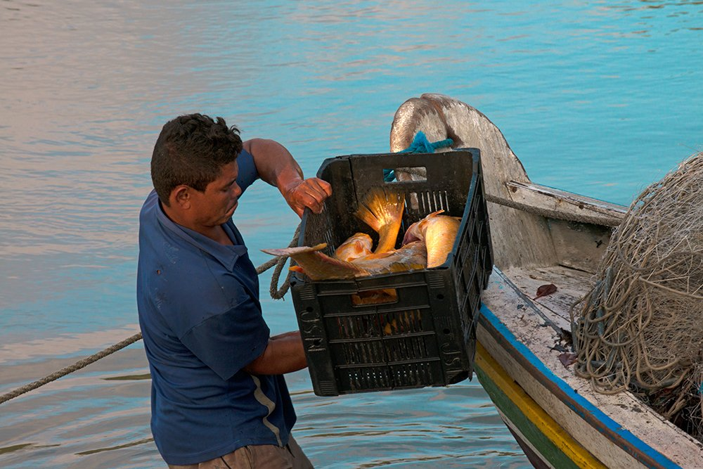 Resex de Cururupu, imagem de -pescador-e-caixa de peixes na resex cururpu