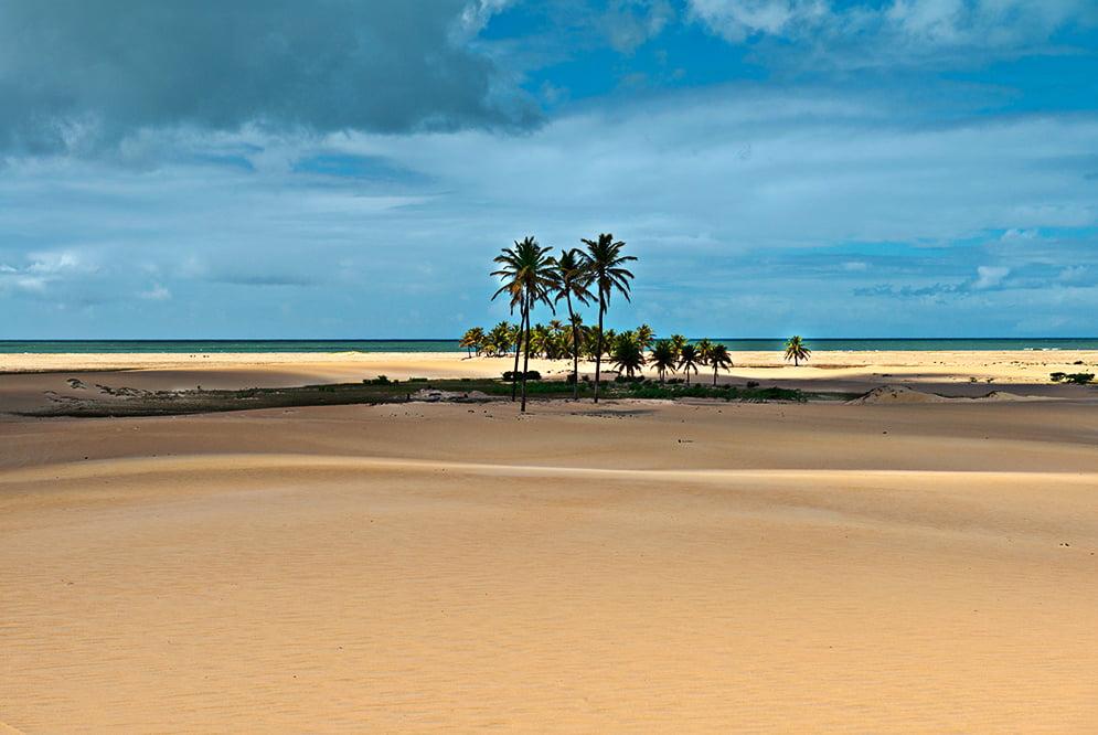 imagem da Área de Proteção Ambiental de Piaçabuçú