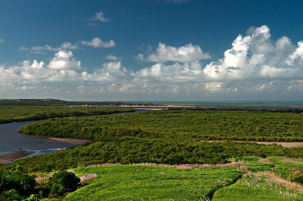 imagem de manguezal na APA Costa dos Corais, parte II, e Reserva Extrativista Acaú-Goiana