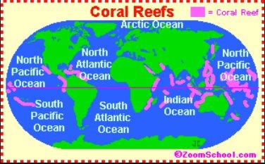 imagem de mapa mostrando a distribuição de corais e sua importância no mundo