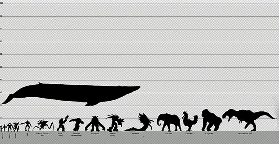 Baleia azul, boa notícia, ilustração mostra tamanho da baleia azul, elefantes e dinossauros