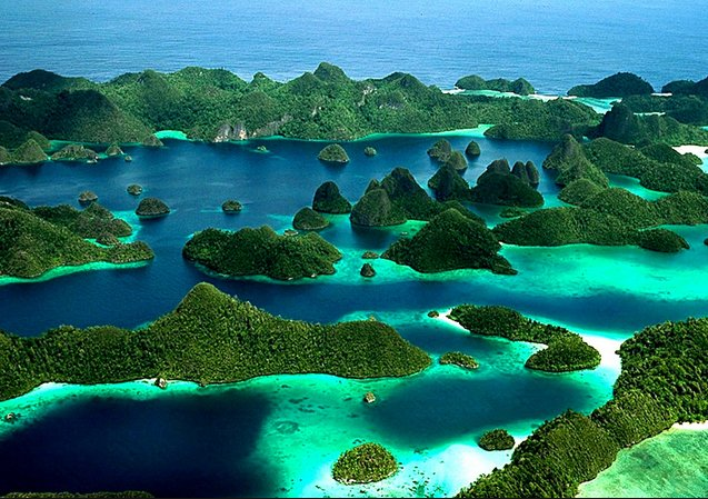 Corais de Raja Ampat: show da natureza, imagem das ilhas Raja Ampat