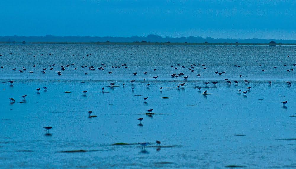 Eventos extremos, peso para a economia, imagem do parque nacional da lagoa do peixe
