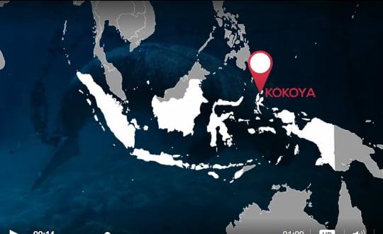 mapa da ilha de kokoya, indonésia, onde encontraram Mamíferos marinhos em cativeiro,