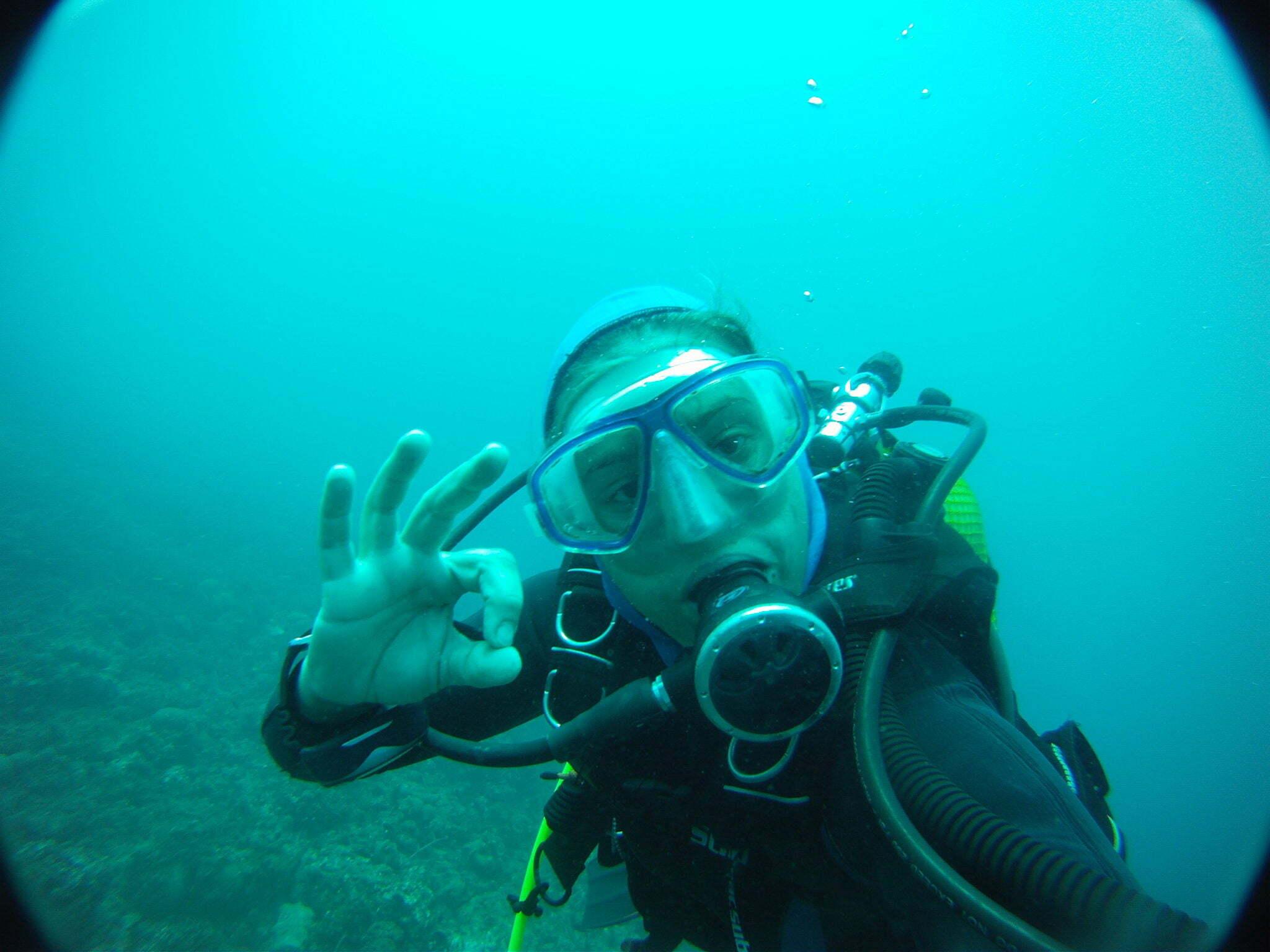 guia do mergulho, imagem de mergulhar autônomo debaixo dagua