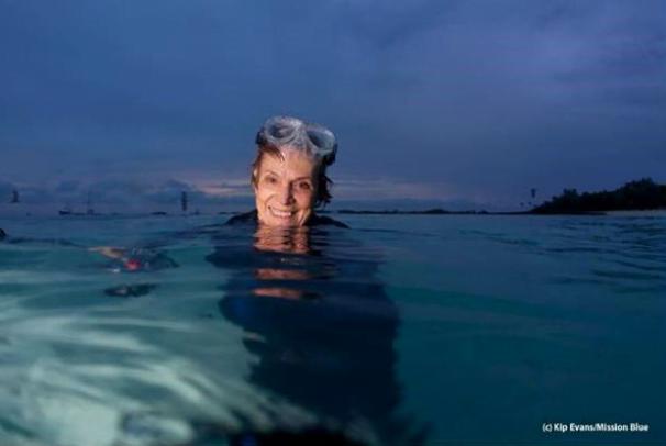 Oceanos, maior problema é ignorância, imagem submarina de sylvia earle