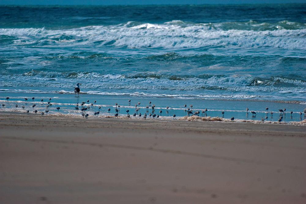 mar como futuro,imagem do mar