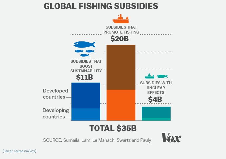 Indecentes e insustentáveis subsídios à pesca