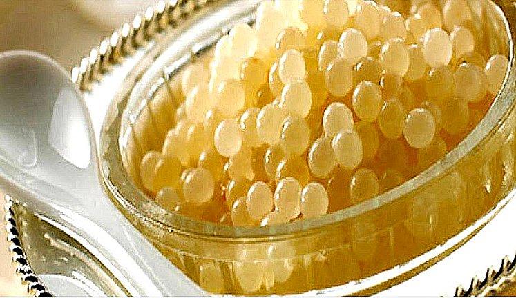 imagem de uma lata de caviar albino