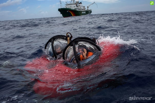 Corais na foz do Amazonas, imagem do submarino do greenpeace