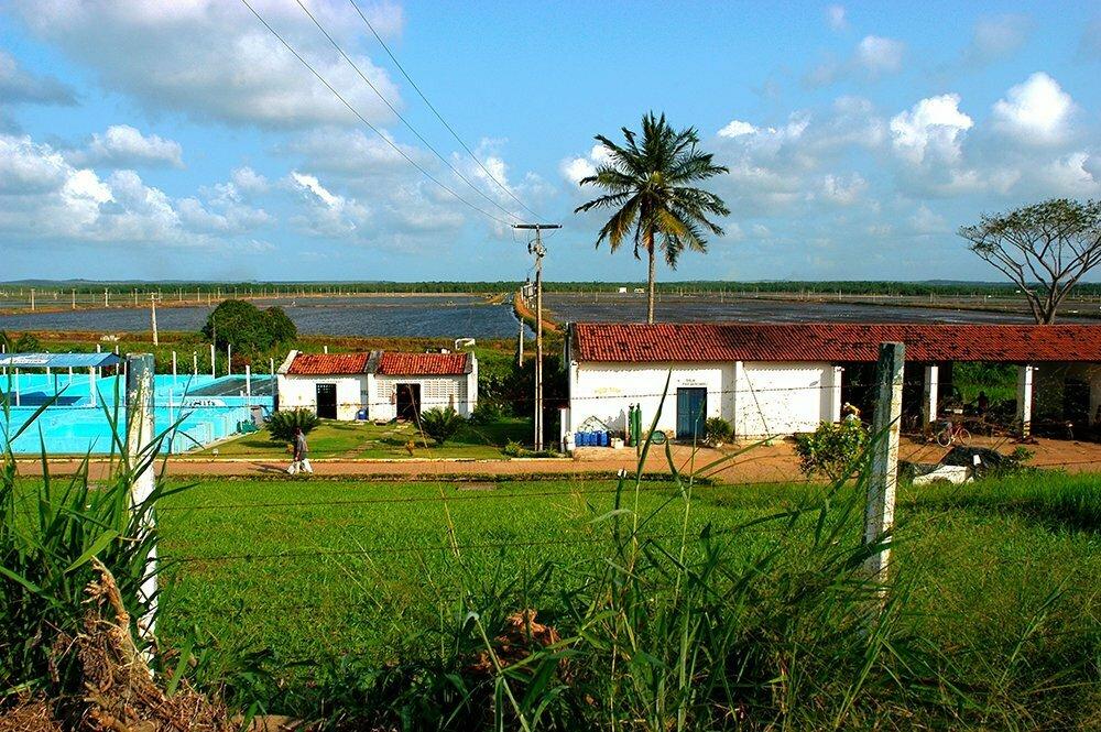 Turismo desordenado, imagem de fazenda de camarão no rio Cunhaú, RGN