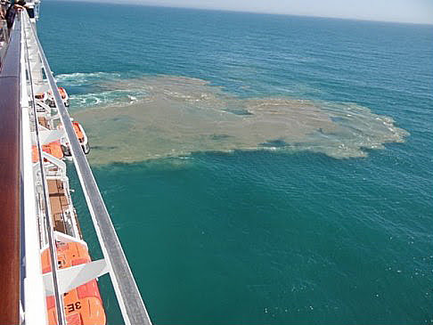 imagem de Navios descartam lixo no mar