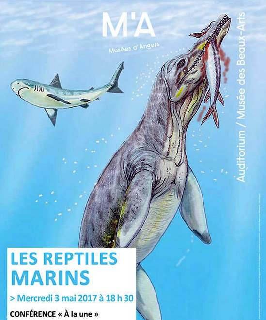 fóssil marinho, ilustração de um fóssil marinho